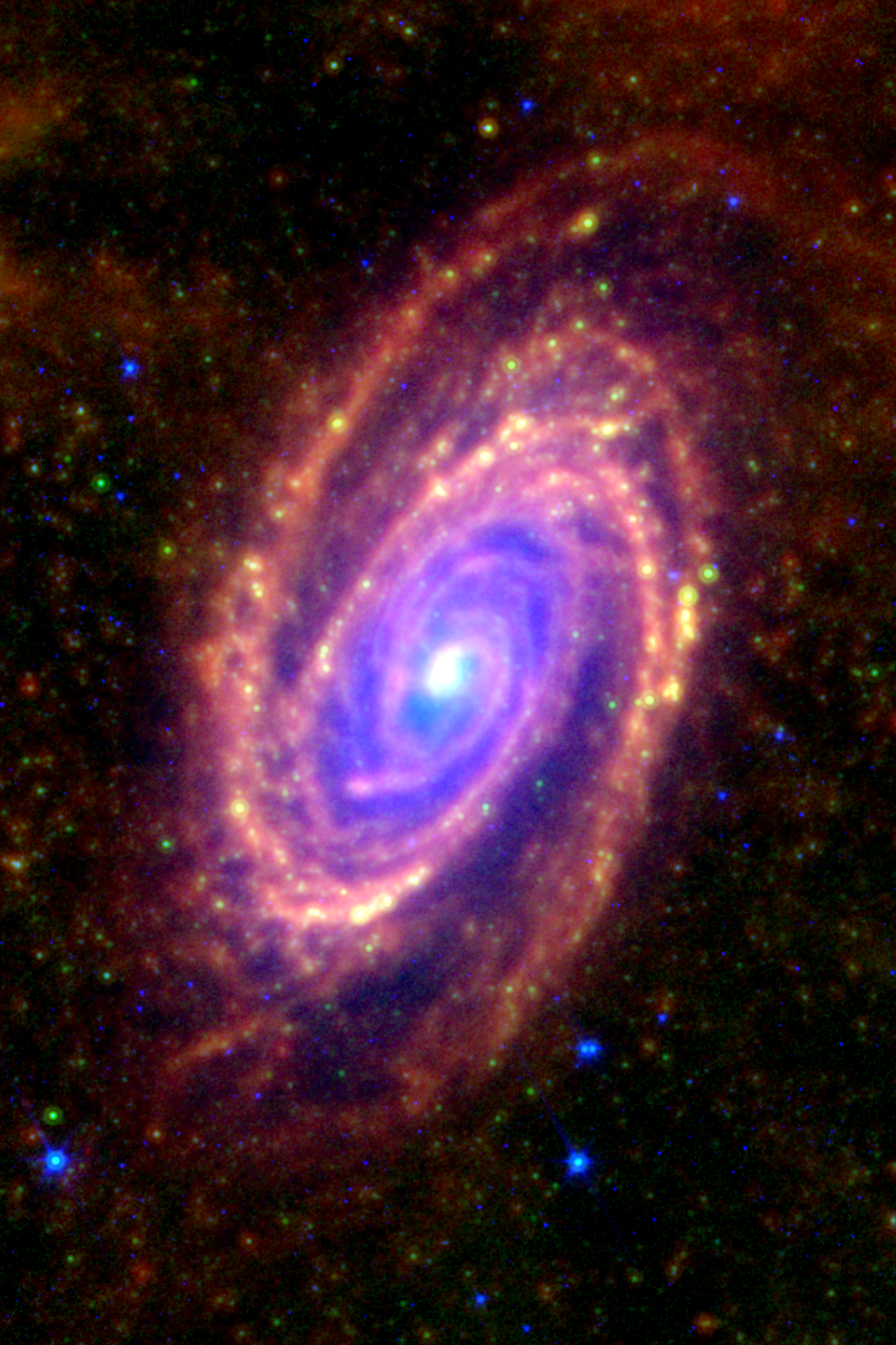 M81 (NGC 3031) as seen in the infrared